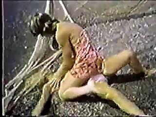 Lesbian Catfight 6