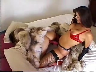 Fur mistress plays with pet
